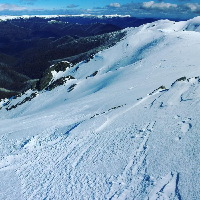 The view across to Bogong High Plains from Mt Bogong