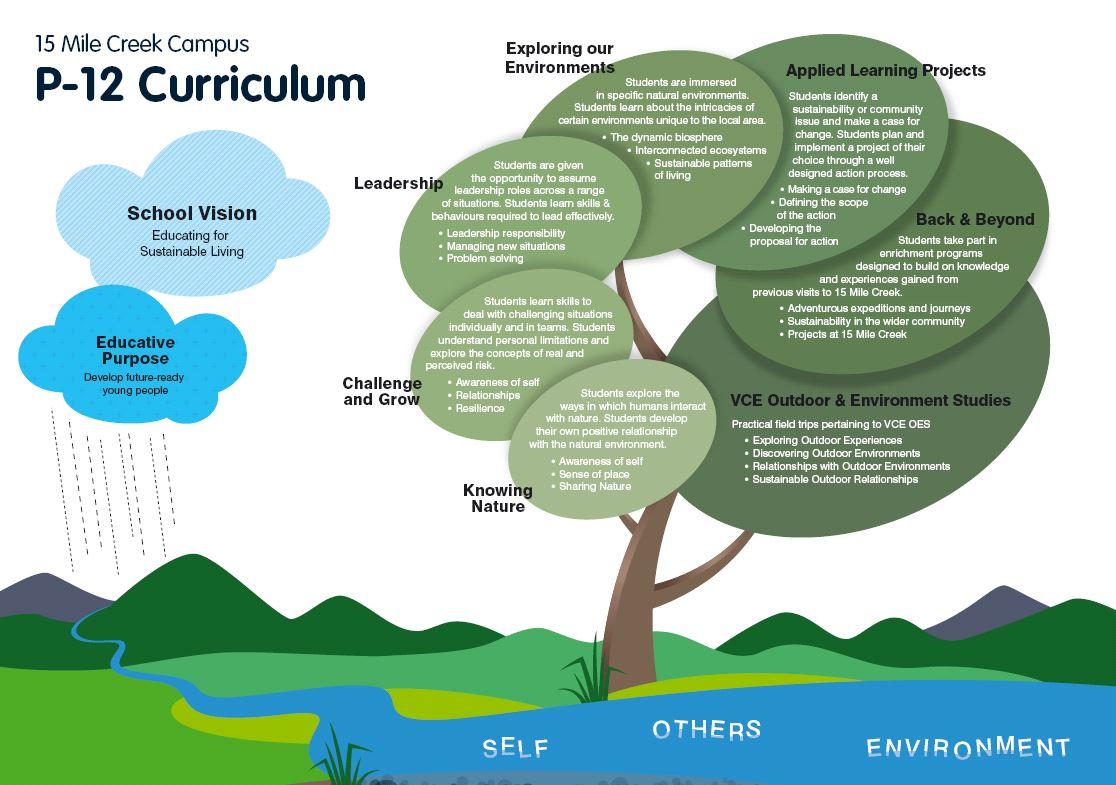 school enviornment and curriculum development