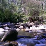 River Junction