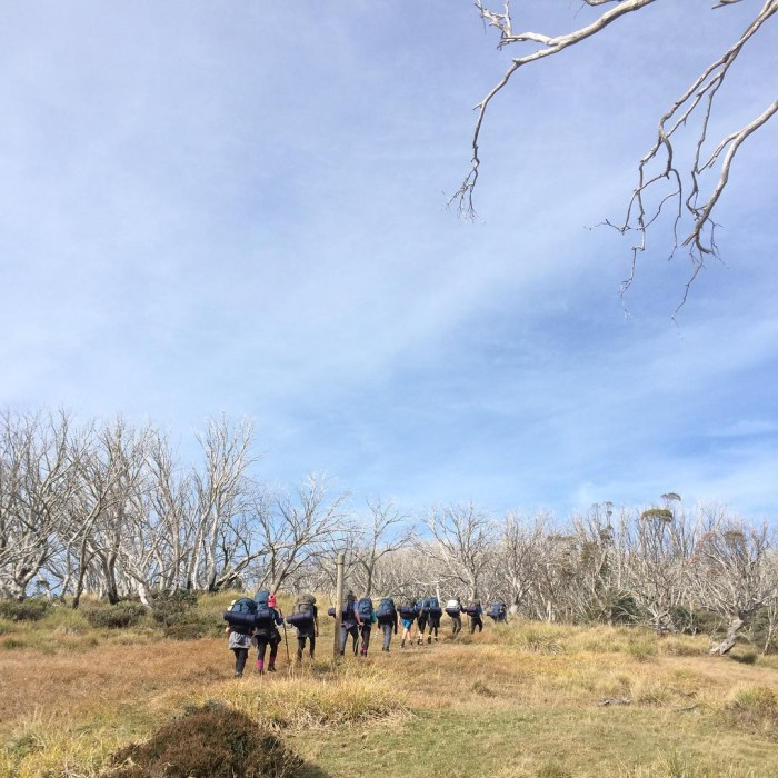 Group 3 Beechworth Future Makers heading up from Westons Huthellip