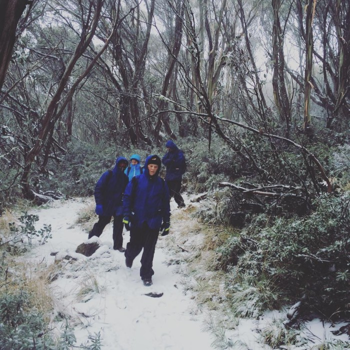 snow walk fallscreek